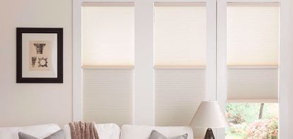 Picture of Day and night cellular shades